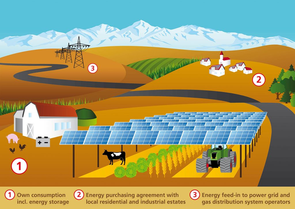 What is agrivoltaics? How can solar energy and agriculture work together?